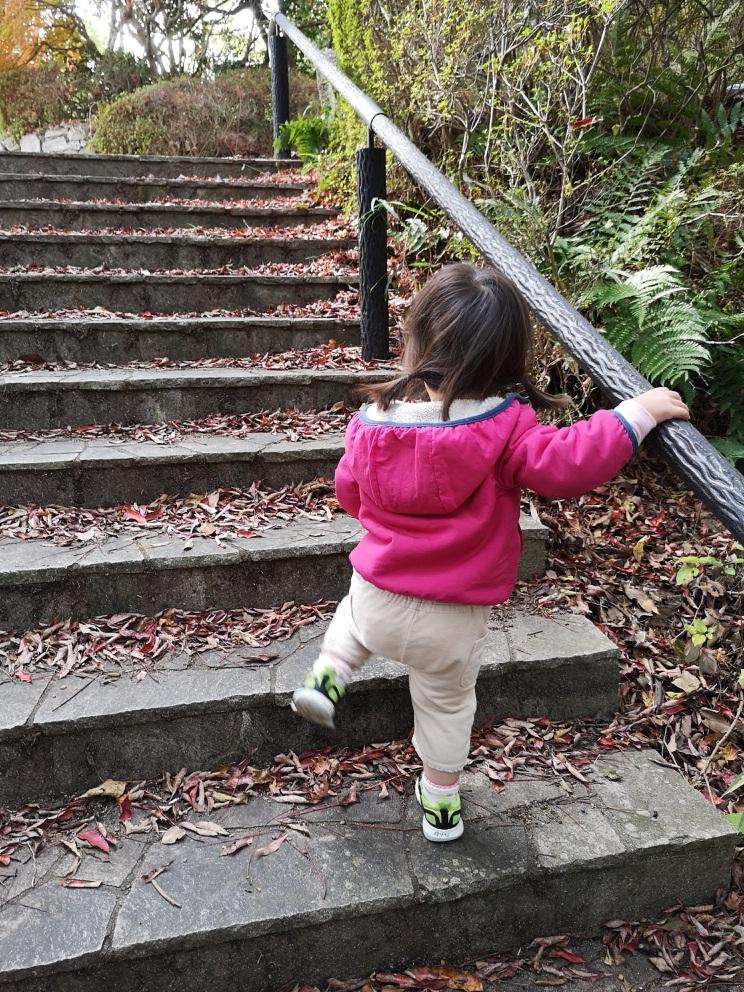甲山で子供とハイキング