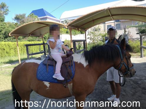 kids riding a pony