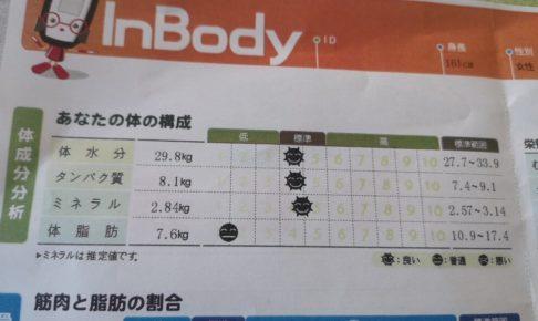体成分の分析結果